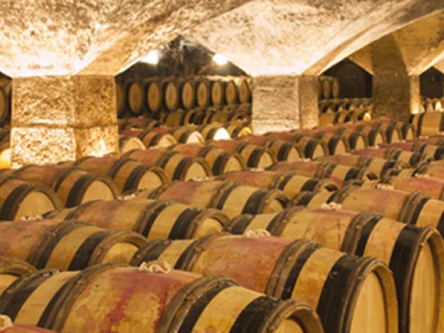 Brumisateur pour chais, cave à vin et cellier